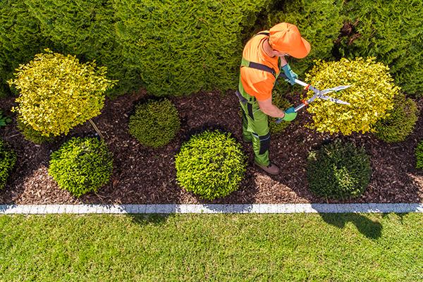 Realizzazione e manutenzione giardini pubblici
